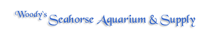 Woody's Seahorse Aquarium & Supply